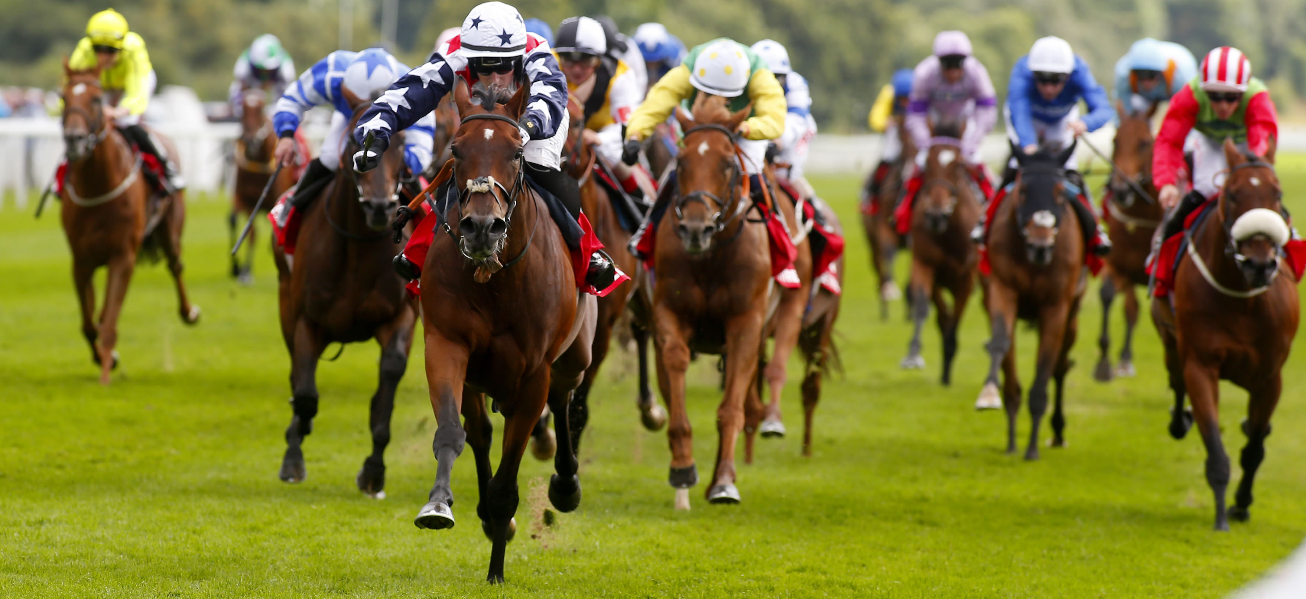 Elimination from big handicaps - The British Horseracing Authority