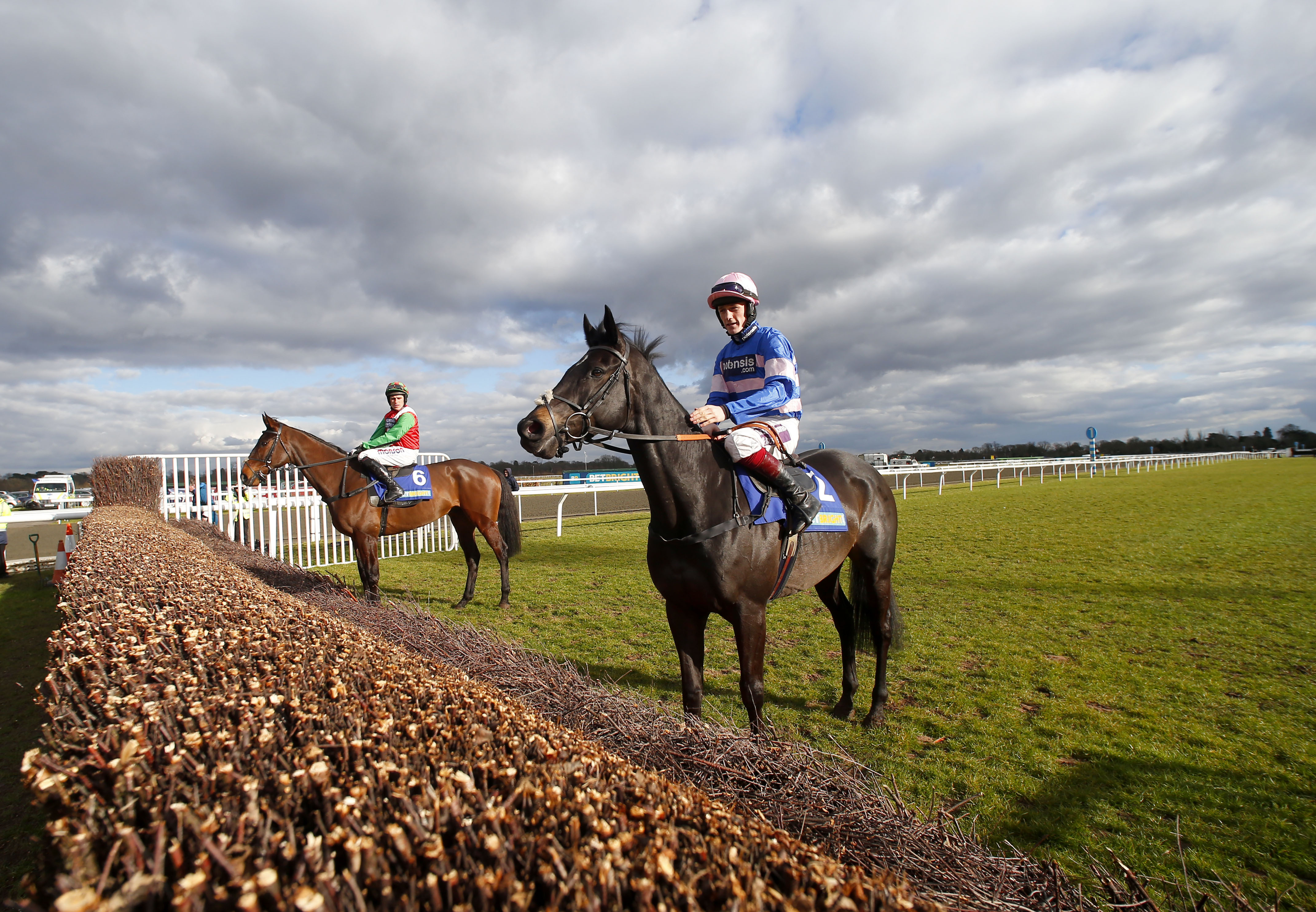 THE CASE AGAINST HANDICAPPING RESTRICTIONS IN NOVICE CHASES