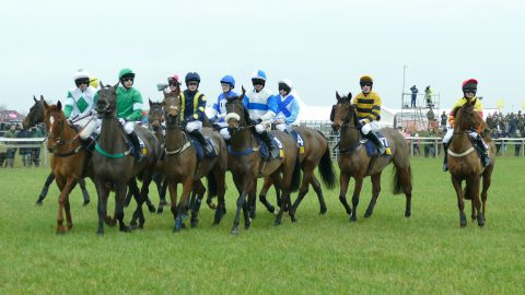 point to point steeple chase fixtures in british racing