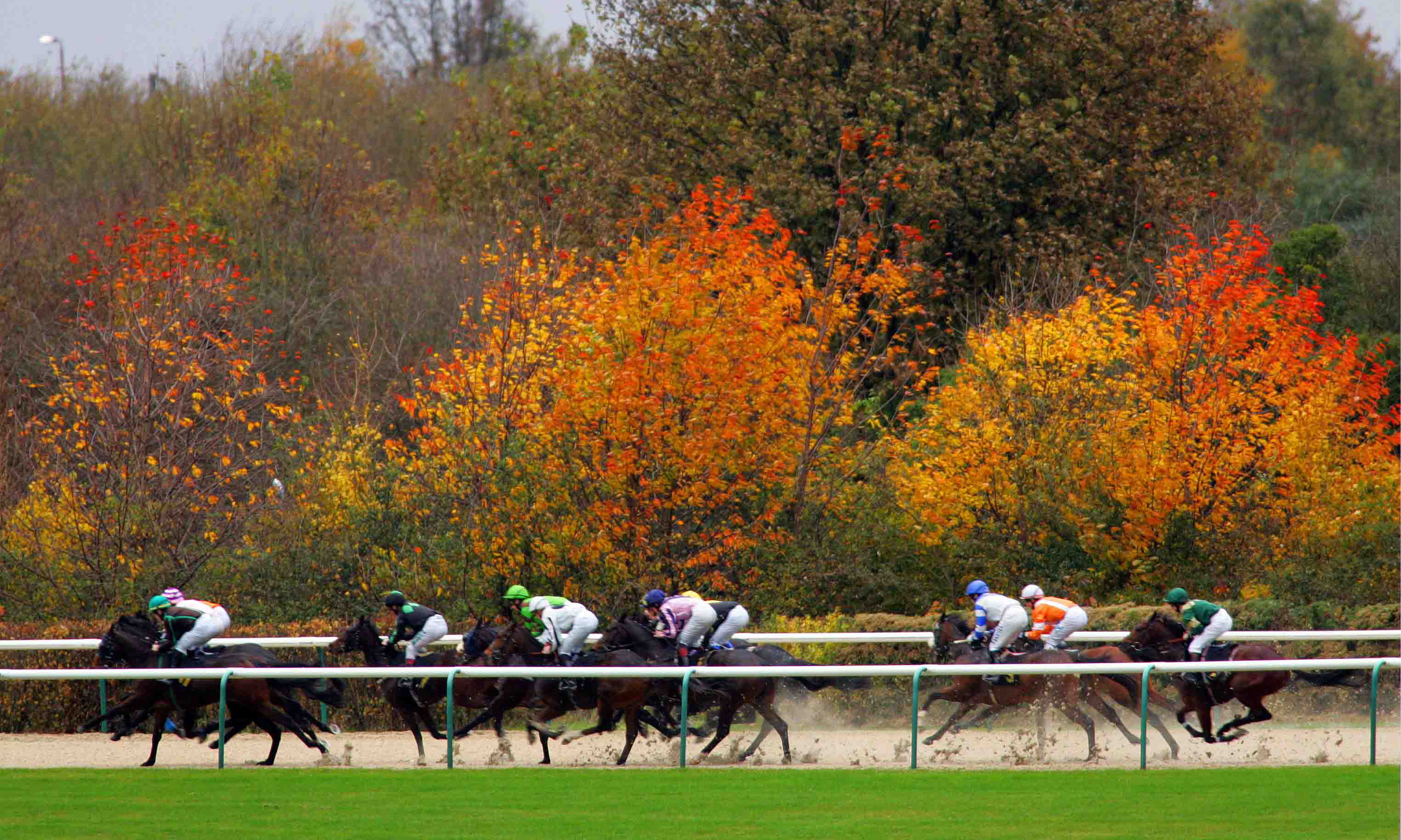 All Races at Chelmsford City | Saturday 7th July 2018 ...