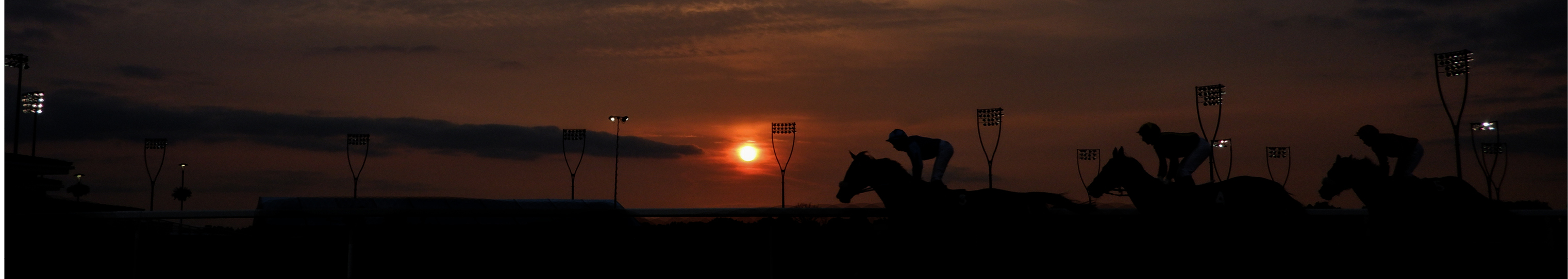 Adjusting a handicap rating - The British Horseracing Authority
