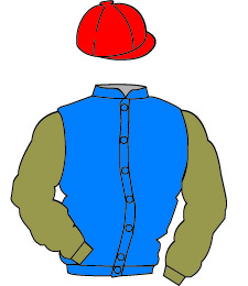 Racing Colours - The British Horseracing Authority