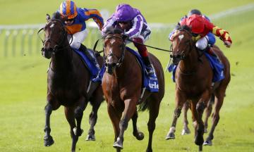 British horseracing authority authorised betting partner australian sports betting comparison